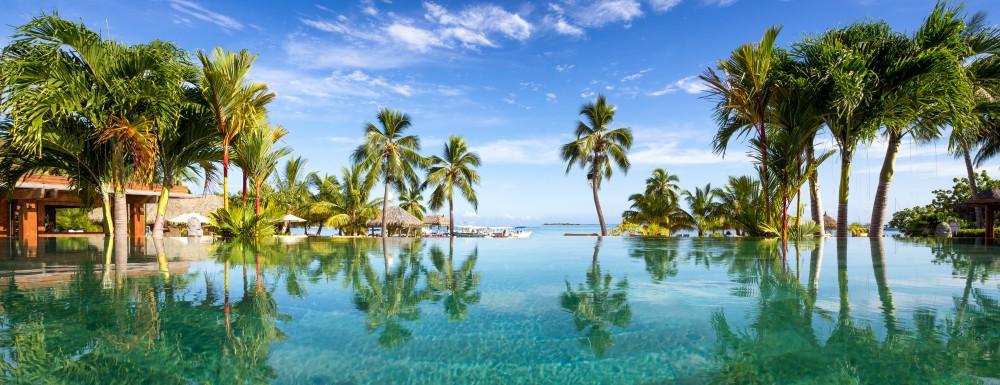 Słoneczna tropikalna plaża z palmami